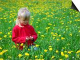 Girl Sitting in Dandelion Field Near Sr Radovna