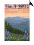 Twain Harte  California - Spring Flowers