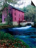 Alley Mill at Alley Spring  Ozarks National Scenic Riverways  Ozark National Park  Missouri