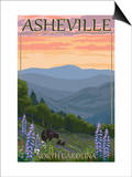 Asheville  North Carolina - Spring Flowers and Bear Family