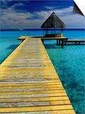 Pontoon and Hut Over the Lagoon  Rangiroa  Taumotus  The  French Polynesia