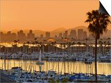 Yachts across San Diego Bay at Sunrise  Looking Towards Downtown