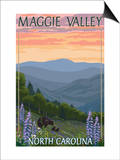 Maggie Valley  North Carolina - Bear Family and Spring Flowers