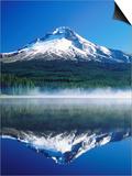 Trilium Lake with Mt Hood in Background  Mt Hood  Oregon
