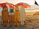 Surfboards on Lighthouse Beach in Late Afternoon Sunlight