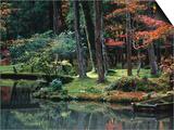 Saiho-Ji Garden in Autumn  Kyoto  Japan
