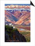 Denali National Park  Alaska - Polychrome Pass