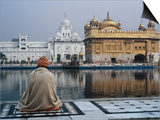 Sikh Man Meditating in Front of the Golden Temple  Amritsar  India