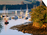 Boats on Kingsbridge Estuary at East Portlemouth  Evening  Salcombe  Devon  England