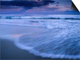 Wave on Shore of Neck Beach at Sunset  Bruny Island  Tasmania  Australia