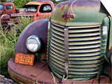 Rusted Pick-Up Trucks