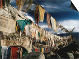 Prayer Flags Above Leh  Ladakh  Leh  Jammu and Kashmir  India