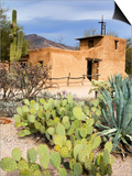 Adobe Mission  Degrazia Gallery in the Sun
