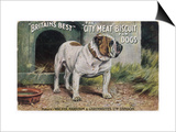 """Bulldog Stands Outside His Kennel in an Advertisement for """"City Meat"""" Dog Biscuits"""
