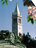 University of California  the Campanile  Alamada County  Berkeley  California