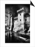 Tarascon Chateau  Provence  France