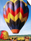 Balloon Landing  Napa Valley  California