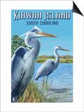 Kiawah Island  South Carolina - Blue Herons