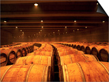 Barrel Room at Opus One  Napa Valley  California