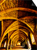 Yellow Arches 1