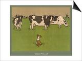 Who's Afraid  a Perky Little Dog Keeps an Eye on Three Cows