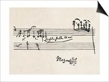 Cadenza  with Mozarts Signature