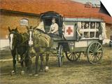 Horse Ambulance at Beverloo Training Camp  Belgium