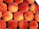 Peaches (Prunus Persica) Europe