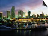 Night Skyline of Miami  Florida