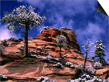Clearing Winter Storm  Zion National Park  UT