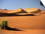 Sand Dunes in Namib Desert  Namibia