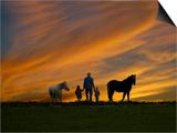 Ohio  Sugarcreek  Amish Family Viewing Sunset