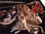 Ballet Shoes  Violin  Flute  and Flower