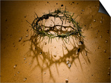 Crown of Thorns with Large Shadow and Pieces of Rock