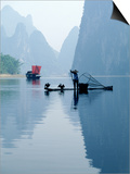 Fishing with Cormorants  Li River  China