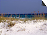 Beach on Gulf of Mexico  Al