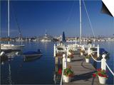 Balboa  Newport Beach  CA