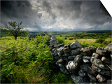 Dark Storm Clouds Above Stone Wall Near Combestone Tor  Devon  Dartmoor Np  UK
