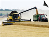 Yellow New Holland Combine Harvester Unloading Grain into Trailer  UK
