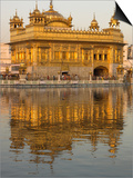The Sikh Golden Temple Reflected in Pool  Amritsar  Punjab State  India