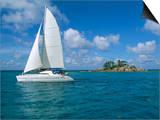 Catamaran  Island of Praslin  Seychelles  Indian Ocean  Africa