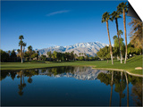 Pond in a Golf Course  Desert Princess Country Club  Palm Springs  Riverside County  California
