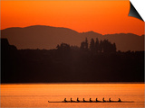 Silhouette of Men's Eights Rowing Team in Action  Vancouver Lake  Washington  USA
