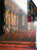 Monks Inside the Main Prayer Hall  Drepung Buddhist Monastery  Lhasa  Tibet  China