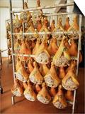 Parma Hams on Curing Racks  Near Pavullo  Emilia-Romagna  Italy