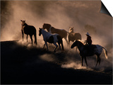 Cowboy Rounding Up Horses  Oregon