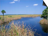 Everglades National Park  Unesco World Heritage Site  Florida  USA