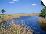 Everglades National Park  Unesco World Heritage Site  Florida  USA