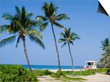 Hapuna Beach  Island of Hawaii (Big Island)  Hawaii  USA
