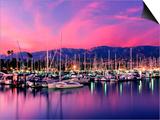 Boats Moored in Harbor at Sunset  Santa Barbara Harbor  Santa Barbara County  California  USA